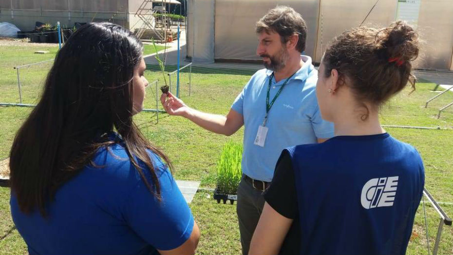 Gestor da Syngenta demonstrando uma das fases do trabalho realizado na empresa para jovens aprendizes no interior de SP