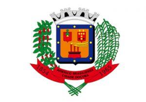 Brasão da Câmara Municipal de Américo Brasiliense